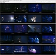 NICK CAVE & THE BAD SEEDS  - We Came Along This Road - live in Lyon, France,  2001 - 1 music video (DVD rip AC3)